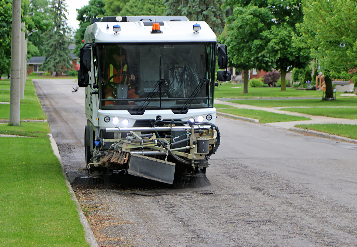 Street sweeper on a tree-lined street